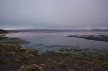 Le laguna colorada (4400m)