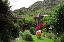 Le jardin de notre hôtel