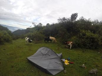 Camp de base jour 3