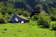 Camp de base jour 2